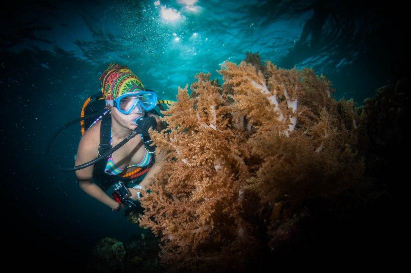 Diving Lembata