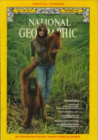 orangutan_tanjung-puting